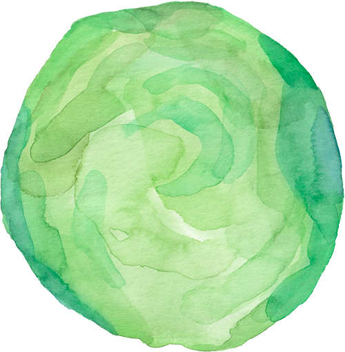 Brussels sprout watercolor